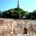 Cetatea Orastie